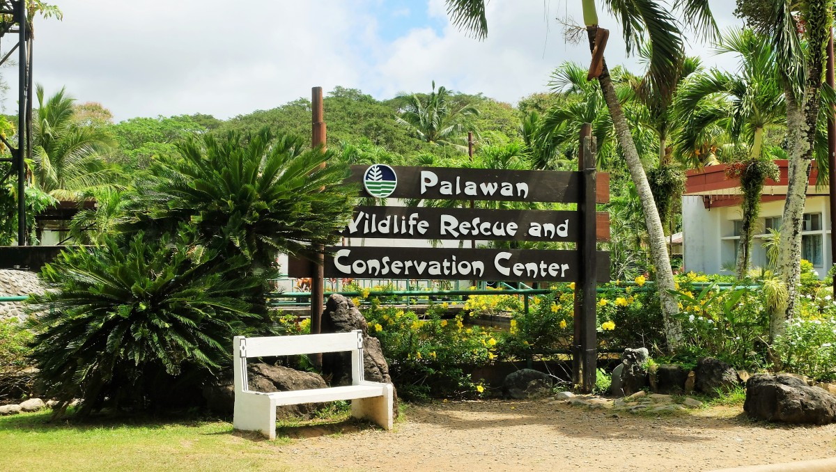 Crocodile Farm and Nature Park | Puerto Princesa, Palawan